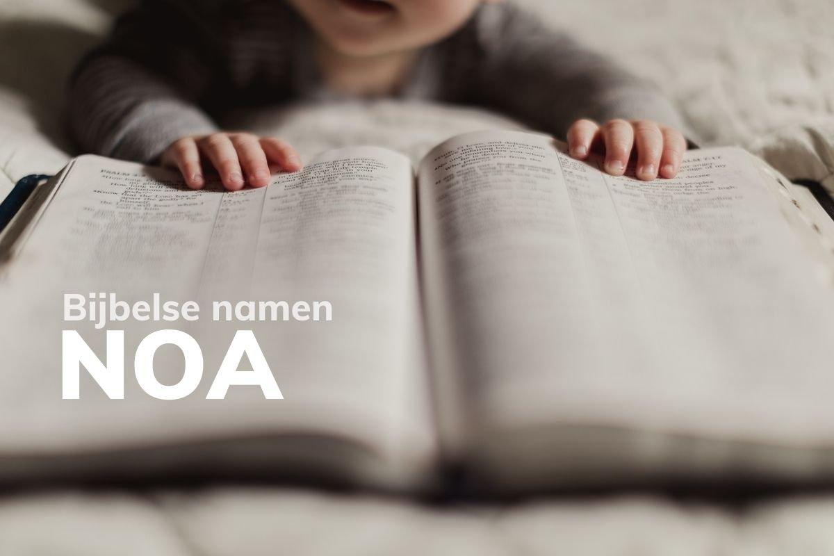 Bijbelse naam Noa